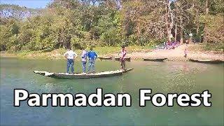 Trip to Parmadan Forest / Bibhuti Bhushan Abhayaranya ( Reserve Forest )