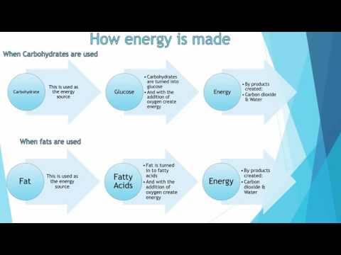 GCSE PE – Lesson 18 - GCSE PE - Energy sources; aerobic and anaerobic