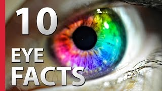 10 Crazy Facts About Human Eyes
