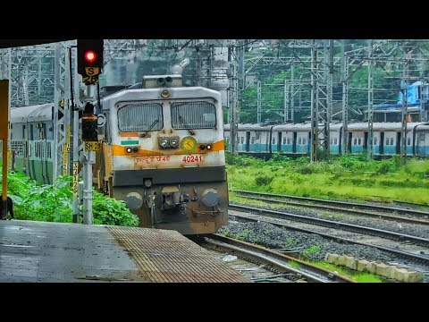 """Snaky Entry Into Thane""