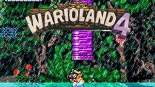 Wario Land 4 - Emerald Passage - Monsoon Jungle - (GBA)