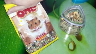 видео Корм Little One