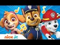 PAW Patrol Theme Song | Nick Jr. |