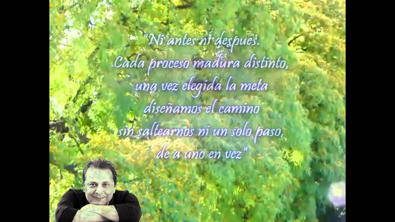 Frases De Academia Para Foto: Frases Para Reflexionar 2 De Ricardo Raúl Benedetti