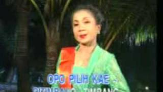Download Video Tahu Opo Tempe - Manthous & Minul MP3 3GP MP4