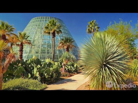 Guía turística - San Antonio, Estados Unidos | Expedia.mx