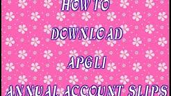 APGLI ANNUAL ACCOUNT SLIPS