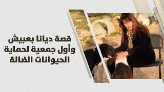 قصة ديانا بعبيش وأول جمعية لحماية الحيوانات الضالة