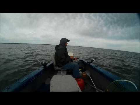 Saginaw Bay Trolling For Walleye