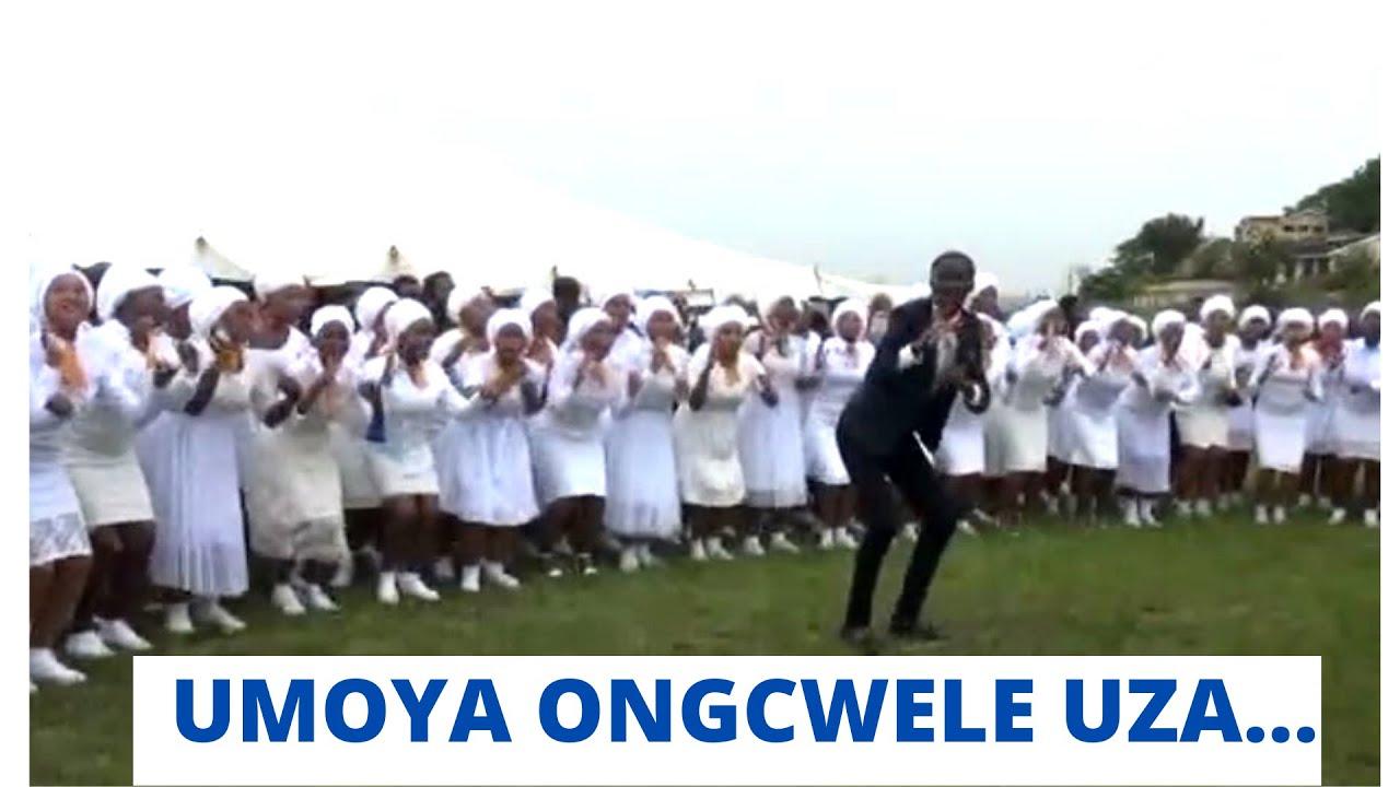 Download LOMOYA ONGCWELE  THE TACT