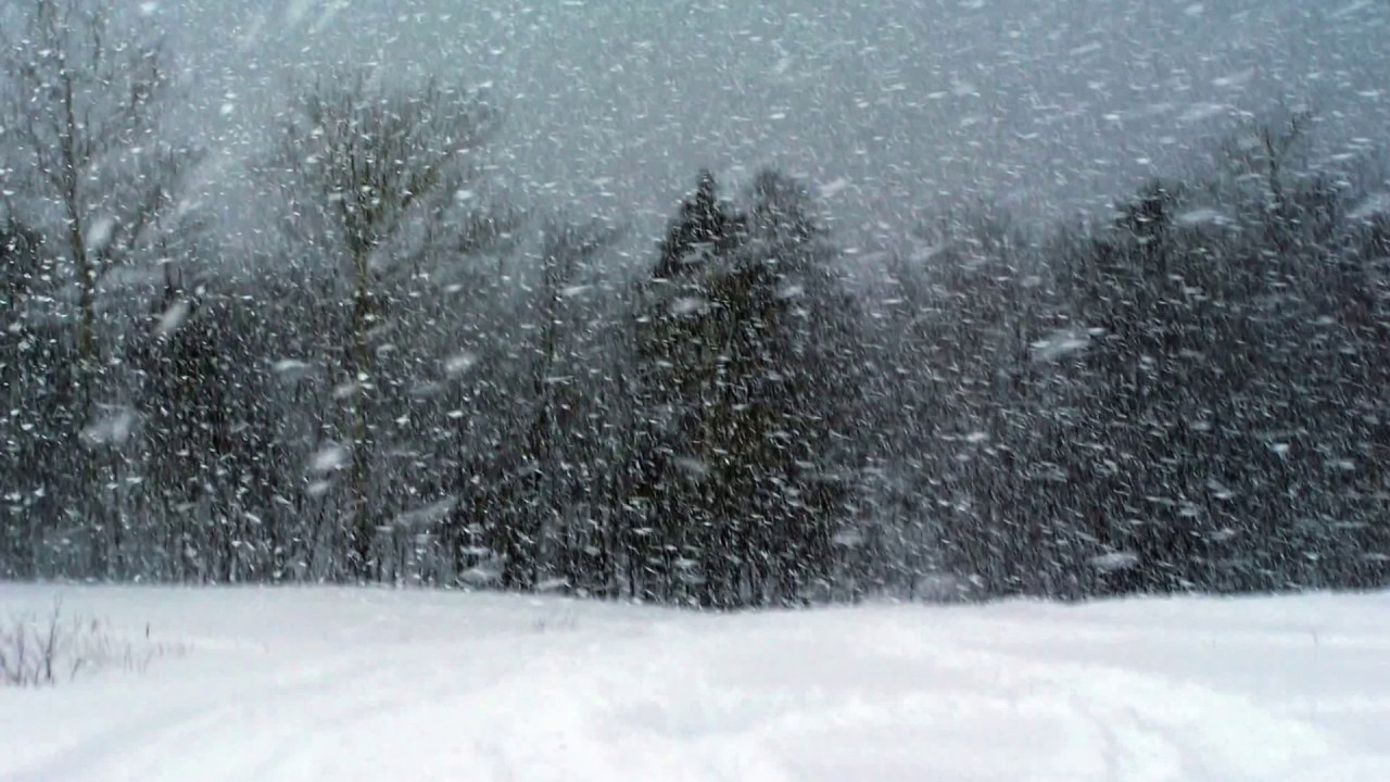 Image result for snowstorm