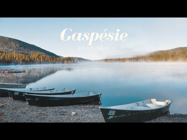ROAD TRIP Gaspésie | On voit nos premiers ORIGNAUX | #QUEBEC