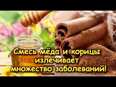 Корица с медом прицельный удар по жиру
