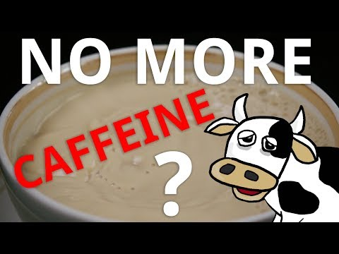 What Happens if You Stop Drinking Caffeine?