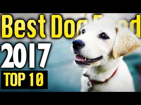 Best Dog Food 2017 🔥 TOP 10 🔥
