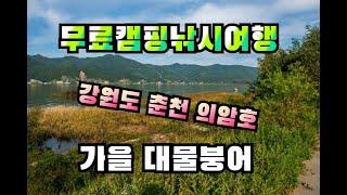 강원도 춘천 강이보이는 의암호 무료캠핑낚시여행  (가을…