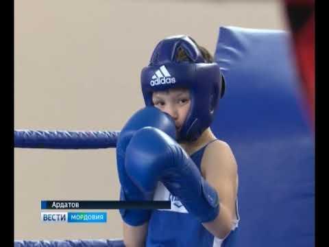 В Ардатов на детский республиканский турнир по боксу съехались 105 участников