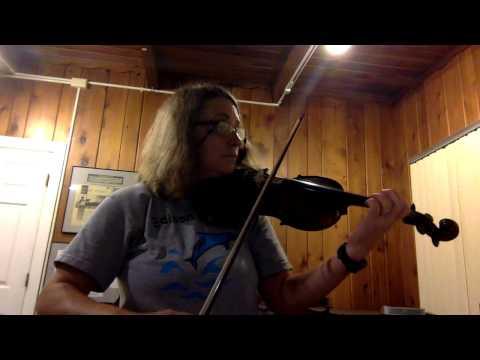 Violin 2 Toy Symphony