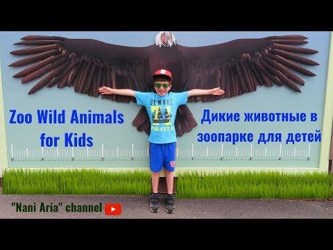 Zoo Wild Animals for Kids. Дикие животные в зоопарке для детей.