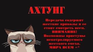 Злой Кот | Бешеные Кошки - 1 серия ... я под столом епт...