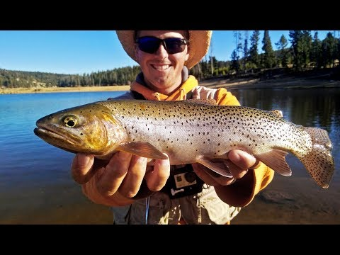 Fishing Montana MOUNTAIN Lakes For Trout!