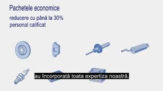 Piesele economice