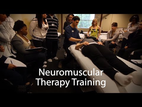neuromuscular-therapy-(nmt)---massage-therapy-school---national-holistic-institute-(nhi)