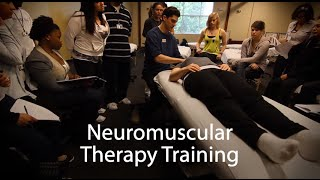 neuromuscular therapy nmt massage therapy school national holistic institute nhi