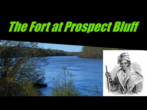 The Fort at Prospect Bluff