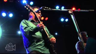 Watch Los Lobos Papa Was A Rolling Stone video