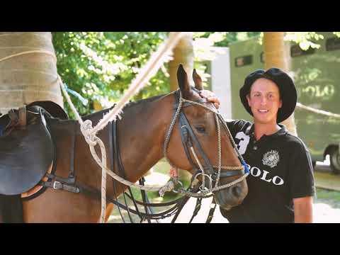 Royal Polo at the Palace | Paleis het Loo