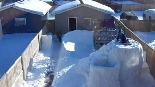 Backyard Bobsled
