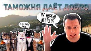 Таможня даёт добро Таможенные правила в Черногории