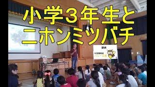 2017年6月23日に福岡市立有住小学校にてニホンミツバチの講義の機会...