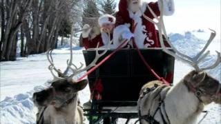 Santa Reindeer Sleigh Rides