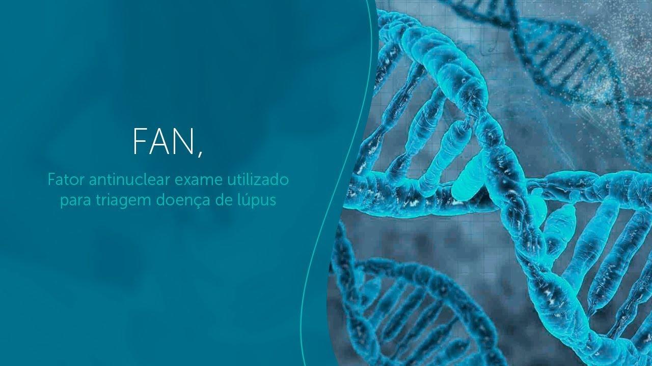fan, fator antinúcleo exame utilizado para triagem doença de lupus