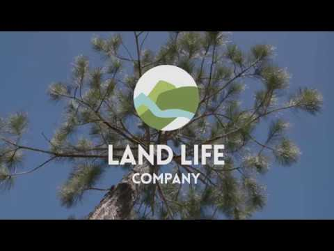 Land Life Company - 5 inspiring projects from around the world