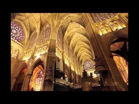 Bach - Sonata nº 3 para violín solo BWV 1005 - Gonçal Comellas, violín