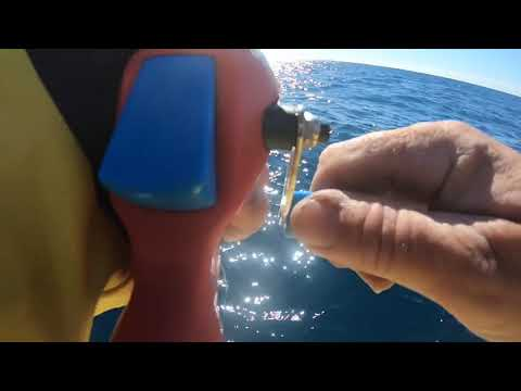WFSF Offshore reef fishing with a kids Spider-Man fishing rod