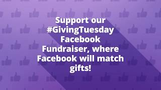 Support The Living Bank on Giving Tuesday