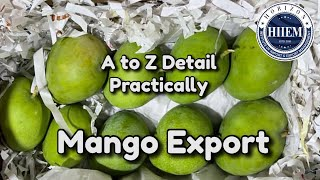How To Export Mango From India | Horizon Exim #MangoExport By Sagar Agravat