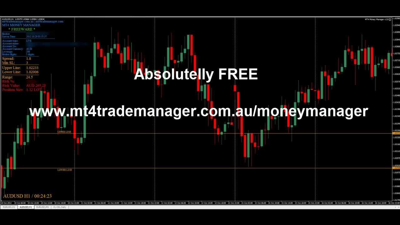 Money management forex indicator форекс бесдипозитный бонус