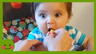 Trate de no reírse ★ Divertida expresión de un bebé comiendo limón #WOAbaby