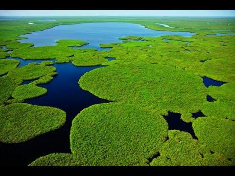The Sudd Wetlands In South Sudan