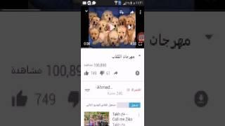 مهرجان الكلاب ههههههههههه
