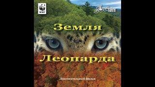 Земля леопарда  Карусель жизни