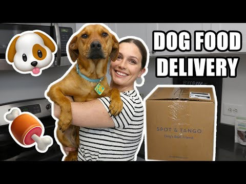 🐶Spot & Tango Review: Is This The Best Fresh Dog Food Delivery Service?