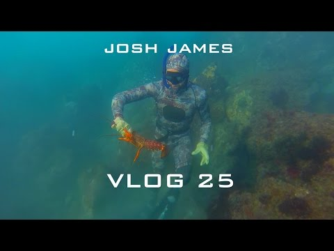 Josh James VLOG 25 - Spear Fishing And Freediving In Jacksons Bay South Westland New Zealand