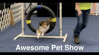 Awesome Pet Show, Fredericksburg, Virginia