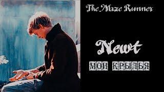 Newt (+Thomas) ✘ Мои крылья